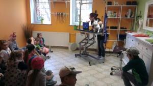 pytania dzieci na temat strzyżenia psów